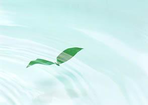 自覚瞑想 イメージ